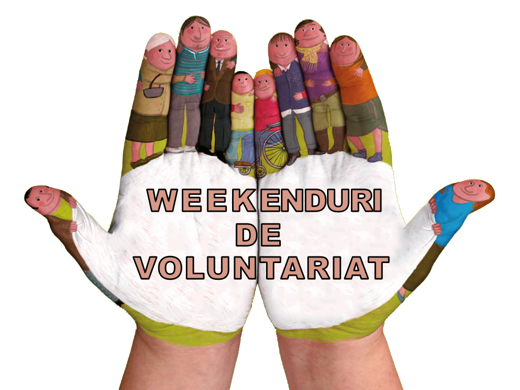WeekendVolunteer